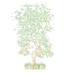 Tree front view – Albero in prospetto