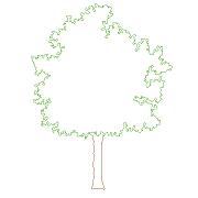Blocco Cad di Tree Front View – Albero in Prospetto in dwg