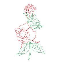 Blocco Cad di Rosa, fiore in dwg
