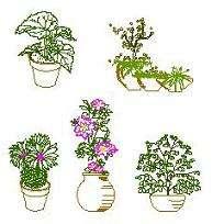 Blocco Cad di Vasi di fiori in prospetto in dwg